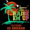 Stream & download Raise 'em up (feat. Ed Sheeran) [Team Lit Mix] - Single