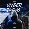 Stream & download UnderDawg (feat. Lil Baby) - Single