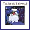 Tea for the Tillerman² by Yusuf / Cat Stevens album reviews
