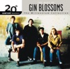 20th Century Masters - The Millennium Collection: The Best of Gin Blossoms by Gin Blossoms album reviews