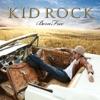 Born Free by Kid Rock album reviews