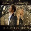 Stream & download Tears Of Gold - Single