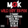 Stream & download Wild Boy (feat. 2 Chainz, French Montana, Meek Mill, Mystikal, Steve-O & Yo Gotti) [Remix] - Single
