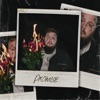 Stream & download Promise - Single