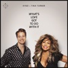 Stream & download What's Love Got to Do with It - Single