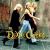Wide Open Spaces by The Chicks album reviews