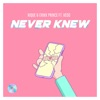 Stream & download Never Knew (feat. Vedo) - Single