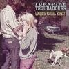 Goodbye Normal Street by Turnpike Troubadours album reviews