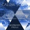 Stream & download You Are the Reason (French Duet Version) - Single