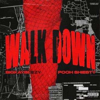 Walk Down (feat. Pooh Shiesty) by BigKayBeezy song reviws