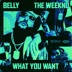 What You Want (feat. The Weeknd) - Single album cover