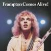 Frampton Comes Alive! (Live) by Peter Frampton album reviews