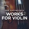 Stream & download Violin Concerto in D Minor, MWV O3: I. Allegro
