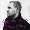 Greatest Hits by David Gray album reviews