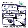 Stream & download Roll Up - Single