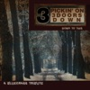 Pickin' On 3 Doors Down: Down to This - A Bluegrass Tribute by Pickin' On Series album reviews