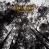 Been Listening by Johnny Flynn album reviews