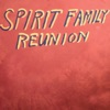 Hands Together by Spirit Family Reunion album reviews