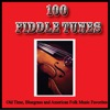 100 Fiddle Tunes, Old Time, Bluegrass and American Folk Music Favorites by Various Artists album reviews