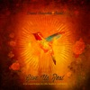 Give Us Rest Or (A Requiem Mass in C [The Happiest of All Keys]) by David Crowder Band album reviews