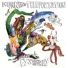 Expanding Anyway by Morning Teleportation album reviews