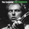The Essential Van Morrison by Van Morrison album reviews