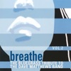 Breathe, Vol. 2: The Bluegrass Tribute to the Dave Matthews Band by Pickin' On Series album reviews