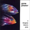 Gone Phishin: A Bluegrass Tribute to Phish by Pickin' On Series album reviews