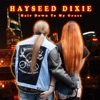 Hair Down to My Grass by Hayseed Dixie album reviews